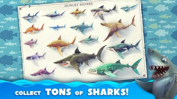 Hungry Shark World apk download miễn phí